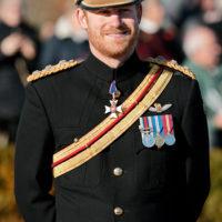 48364 Неделя до свадьбы: что будет с бородой принца Гарри?