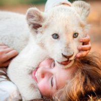 51120 Девочка Миа и белый лев — Русский трейлер (2018)