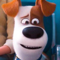 51369 Тайна жизнь домашних животных 2 — Русский трейлер (2019)