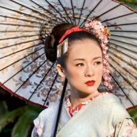 52208 Онсэн, кайсэки и синрин-йока: гид по велнес-процедурам Японии