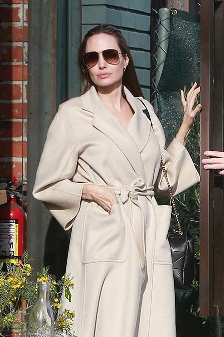 52195 Разделяй и властвуй: Анджелина Джоли на шопинге с сыном Паксом
