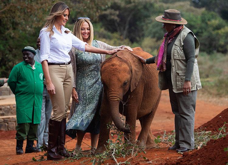 По стопам Мелании Трамп, принца Уильяма и принцессы Мэри: зачем ехать в Кению