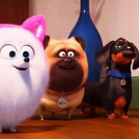 52716 Тайная жизнь домашних животных 2 — Русский трейлер #4 (2019)