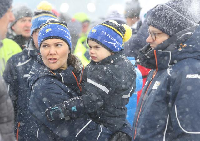 Шведская кронпринцесса Виктория с мужем и детьми попали в снежную бурю