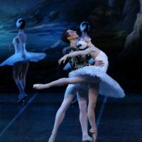56415 Летние балетные сезоны: что смотреть и почему
