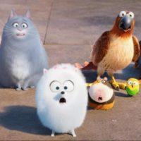 56044 Стоит ли смотреть «Тайная жизнь домашних животных»