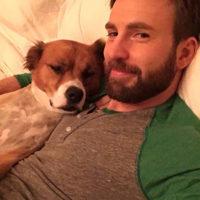 57554 Лучшие друзья Кэти Перри, Шэрон Стоун, Хайди Клум и других звезд: как знаменитости отметили Международный день собаки
