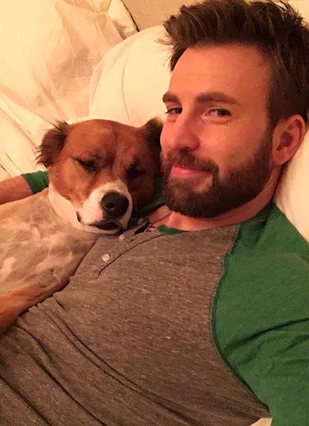 Лучшие друзья Кэти Перри, Шэрон Стоун, Хайди Клум и других звезд: как знаменитости отметили Международный день собаки