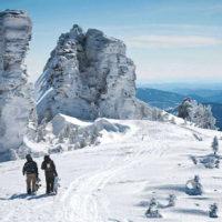 61004 В поисках снега: куда поехать за зимними активностями