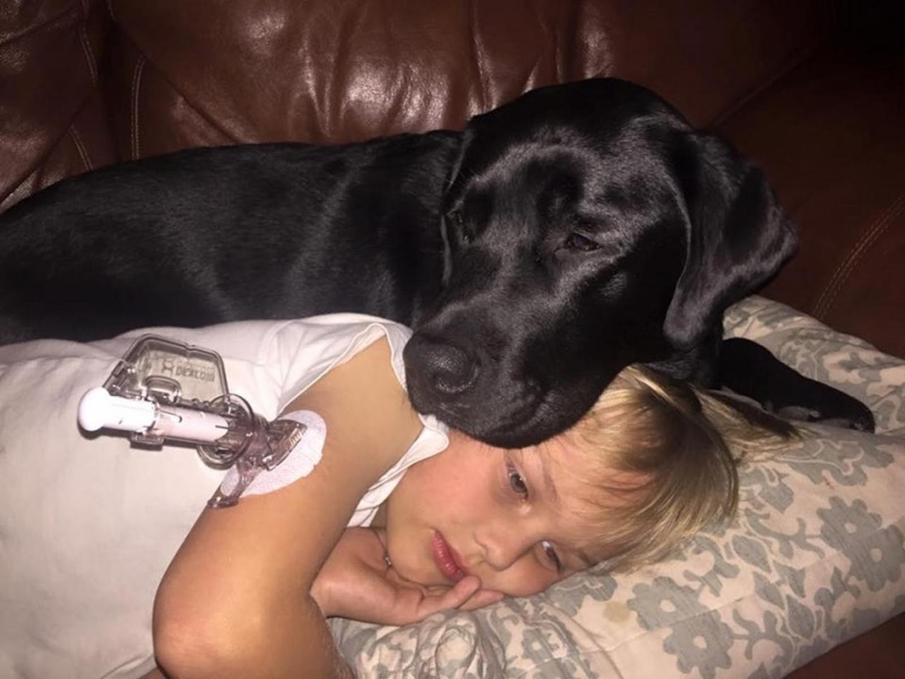 61507 Женщина проснулась от того, что пес ее стягивал с кровати. Он буквально силой потащил ее в комнату сына…
