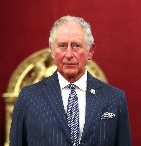 62313 Букингемский дворец подтвердил заражение принца Чарльза коронавирусом