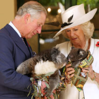61885 Кларенс-Хаус подтвердил, что герцогиня Камилла не сможет стать королевой, когда принц Чарльз взойдет на престол