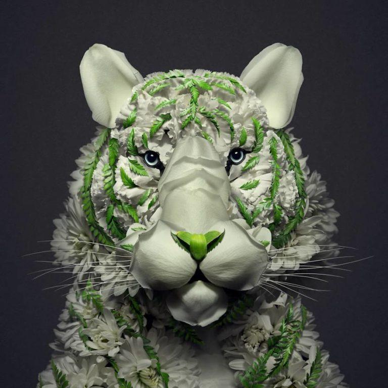 62166 Монреальский художник создает скульптуры животных из природных материалов