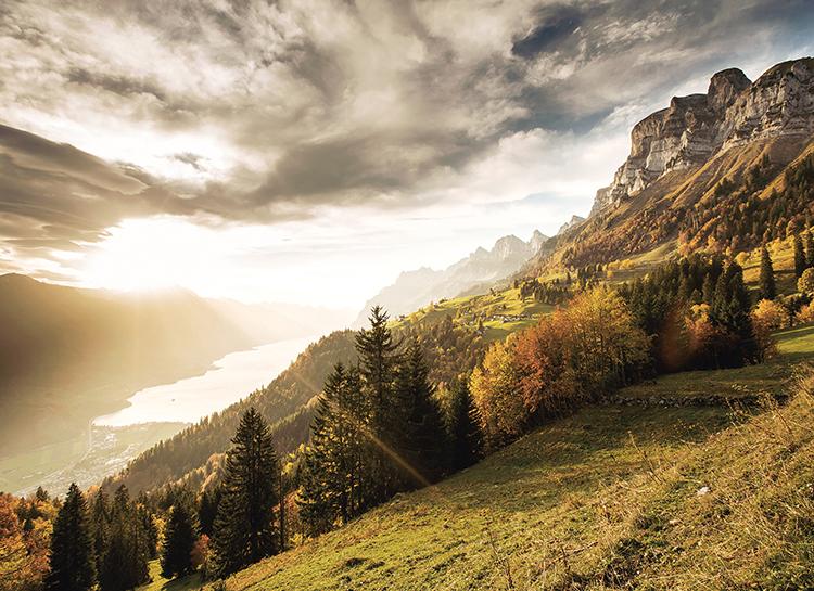 61767 Швейцария гастрономическая: взгляд ресторанного критика Владимира Гридина