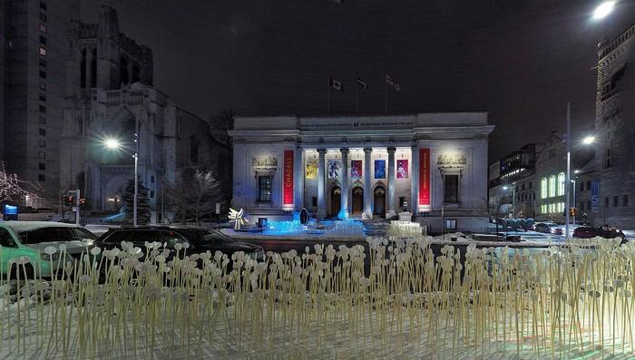 62569 Музей Изящных Искусств Монреаля