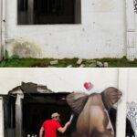 63975 Художник создает удивительные 3D рисунки на улицах города