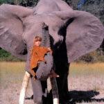 63945 Как сейчас живет девочка-Маугли, которая все детство провела среди слонов и гепардов? Сейчас ей 30 лет