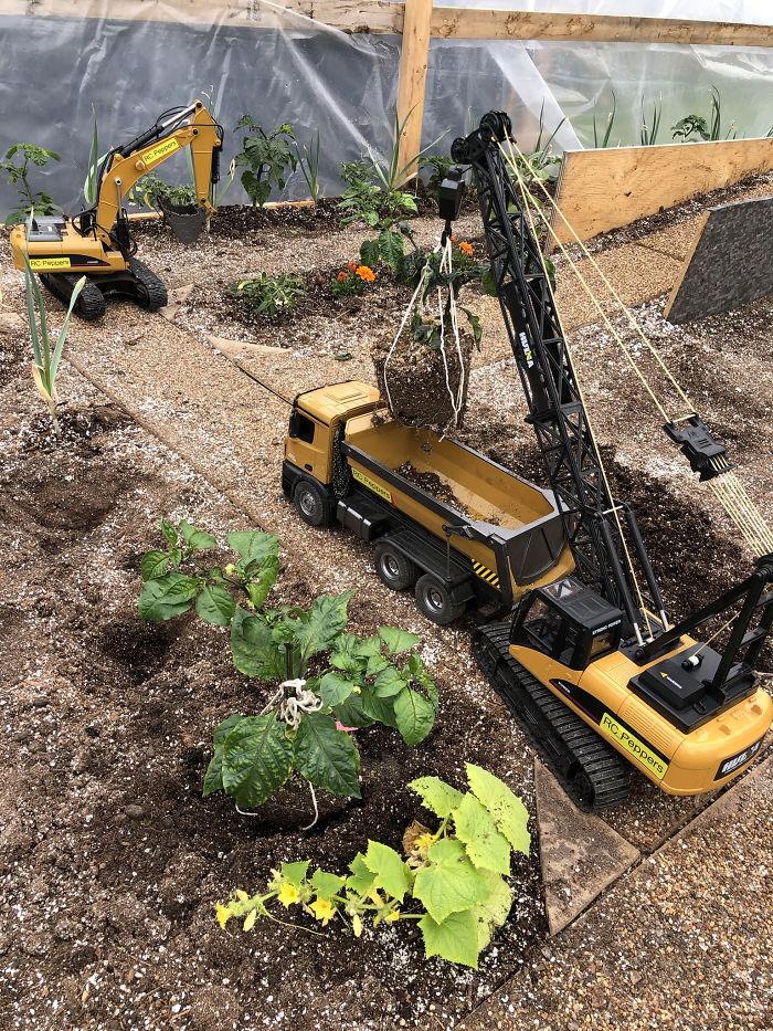 63851 Мужчина выращивает урожай с помощью игрушечной техники, удивительно, но у него все получается!