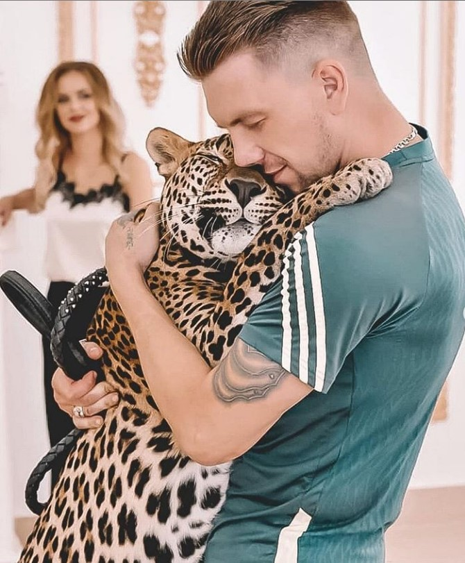 63729 Парень выкупил больного детеныша леопарда из зоопарка. Теперь этот красавец живет у него дома