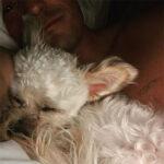 65732 Орландо Блум взял из приюта собаку после гибели любимого пса Майти: фото