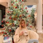 66158 Праздник к нам приходит: как российские и зарубежные звезды украсили свои елки к Рождеству и Новому году