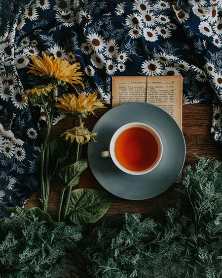 66880 Вкусно и полезно: что добавить в чай, чтобы укрепить иммунитет